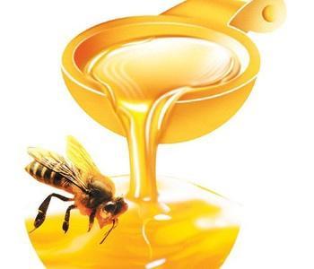 喝蜂蜜的最佳时间