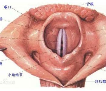 小儿气管炎症状