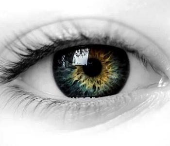 色盲色弱者眼中世界什么样