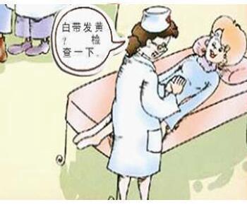 临床上常见的病理白带