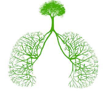 肺栓塞的食疗方法有哪些