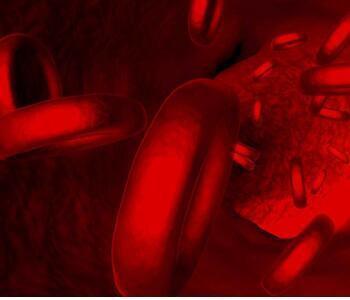 宝宝特发性血小板减少性紫癜怎么回事