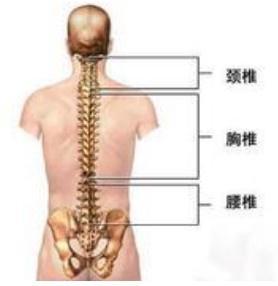 得了未分化脊柱关节病怎么办?