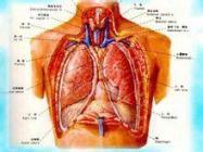 胸膜炎会不会传染