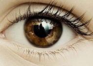 眼底出血在饮食方面要注意些什么