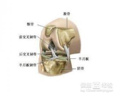右膝内侧半月板损伤右内侧副韧带撕裂怎么办