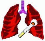 肺癌伴脑转移怎么办