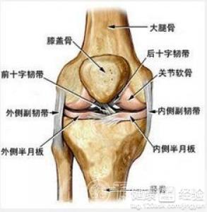 双膝关节半月板损伤如何治疗