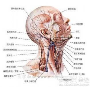 淋巴结核是什么症状