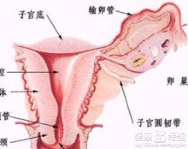 重度宫颈糜烂_宫颈糜烂是怎么引起的