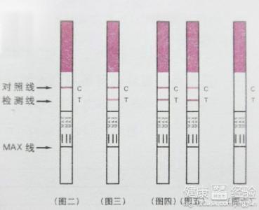 用排卵试纸怎么测排卵期