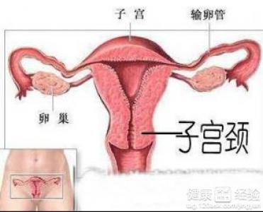纵隔子宫药流过一次还会怀孕吗