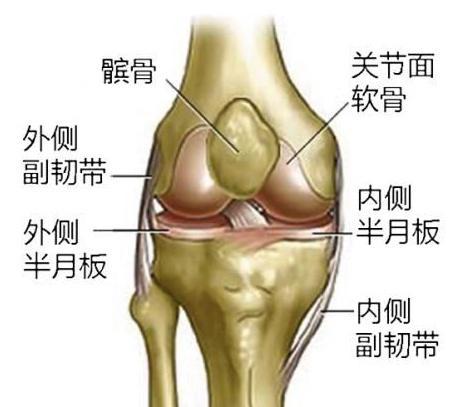 谁做过 膝盖半月板修补或切除手术,效果如何