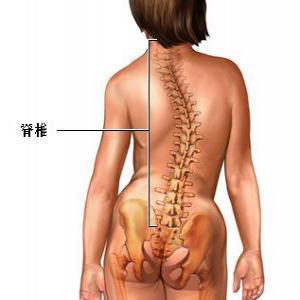 脊柱侧弯症的症状是怎样的