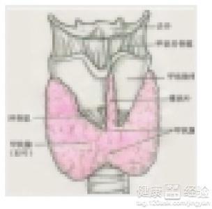 甲状腺癌术后是否还会扩散至淋巴