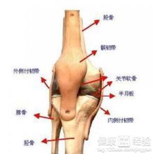 左膝关节内侧半月板损伤有什么症状