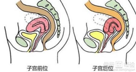 切除子宮需要做哪些檢查