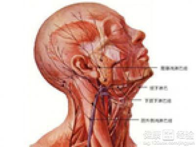 淋巴癌的患者通常是在脖子上长个大疙瘩