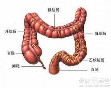 直肠癌的早期症状和饮食