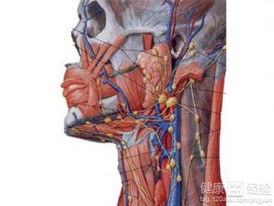 颈部淋巴癌可以放疗吗