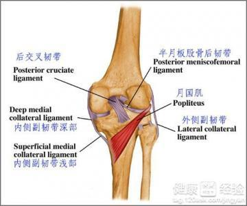 半月板损伤术后的康复锻炼方法