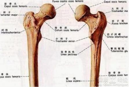 女人外阴实物囹�'�.�_女人阴部毛毛附近两块骨头用手按下会痛,是怎么回事