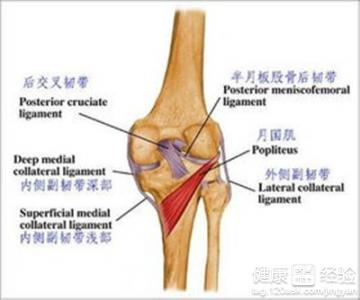 膝关节半月板伤症状
