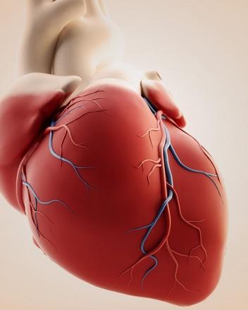 引起噬血细胞综合征的病因有哪些?