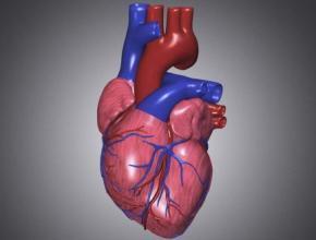 心室内传导阻滞患者安置心脏起搏器后注意事项