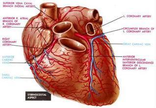 心肌梗死后并发左心室室壁瘤是怎么引起