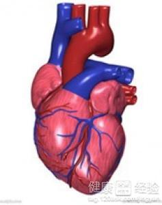 老人心脏病是什么症状
