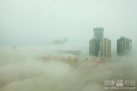雾霾天气的危害是什么图片