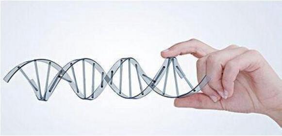 如何预防遗传性小脑性共济失调