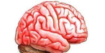 脑炎后遗症的康复治疗