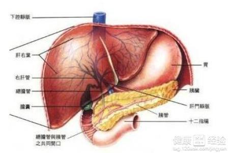 治疗肝囊肿偏方
