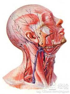耳前淋巴结肿大怎么诊断