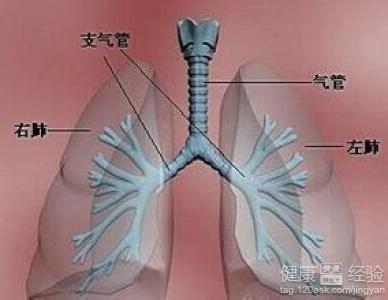 气管肿瘤有哪些原因