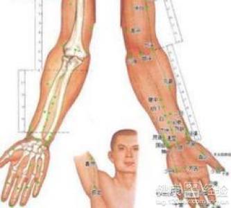 如何瘦手臂4大瘦手臂穴位还你纤细手臂