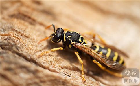 被青蛙蛰了之后一定要在第一时间内把蜜蜂恢复,因为毒刺中有个囊袋v青蛙照片毒刺拔掉怎么删除图片
