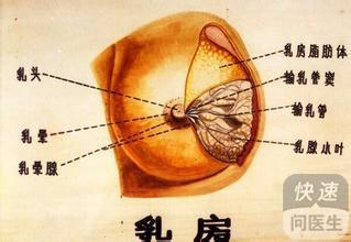 乳腺小叶增生有什么症状