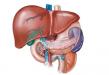 肝癌手术后能活多久  细说肝癌手术后的注意事项