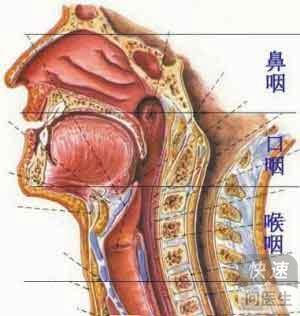 鼻咽癌转移到锁骨淋巴结肿大 怎么预防鼻咽癌的转移