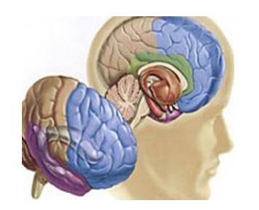 垂体微腺瘤可以治愈吗   1、化学医治   现在   癌症   的化学医治技能现已获得了很大的跋涉,可是因为脑部血的格外结构,   脑瘤   垂体微腺瘤可以治愈吗?