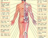 进行性脊肌萎缩症