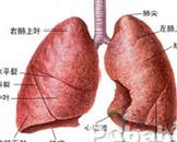 先天性肺囊性病