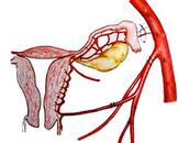 晚期产后出血