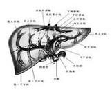 原发性心脏肿瘤