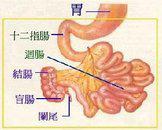 小儿肠吸收不良综合征