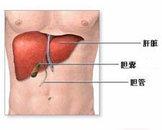 小儿戊型病毒性肝炎