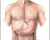 全身性血管损害